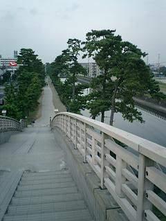 20051028松並木公園.JPG