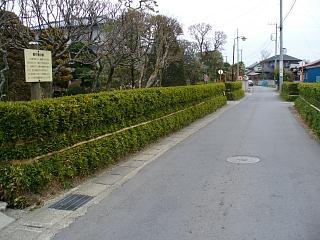 20060407喜連川寒竹囲い.JPG