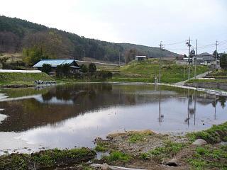 20060430田圃.JPG