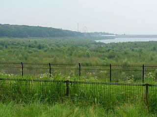 20060708多摩湖.JPG