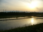 20070523栗駒山s-.jpg