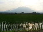 20070624岩手山s-.jpg