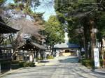 20071227松陰神社s-.jpg