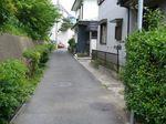 20080517かねさわ道s-.jpg