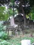 20080928西向天神富士塚.JPG