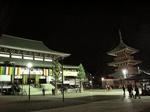 20110104成田山本堂s-.jpg
